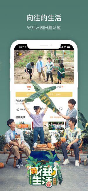 芒果TV手机版安卓版