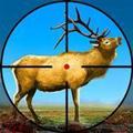 野鹿射击冒险安卓版