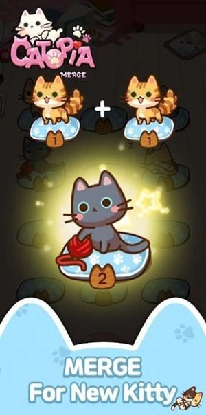 萌猫大本营最新版